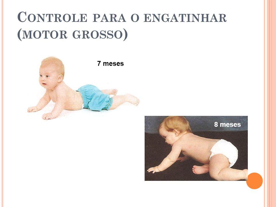C ONTROLE PARA O ENGATINHAR ( MOTOR GROSSO ) 7 meses 8 meses