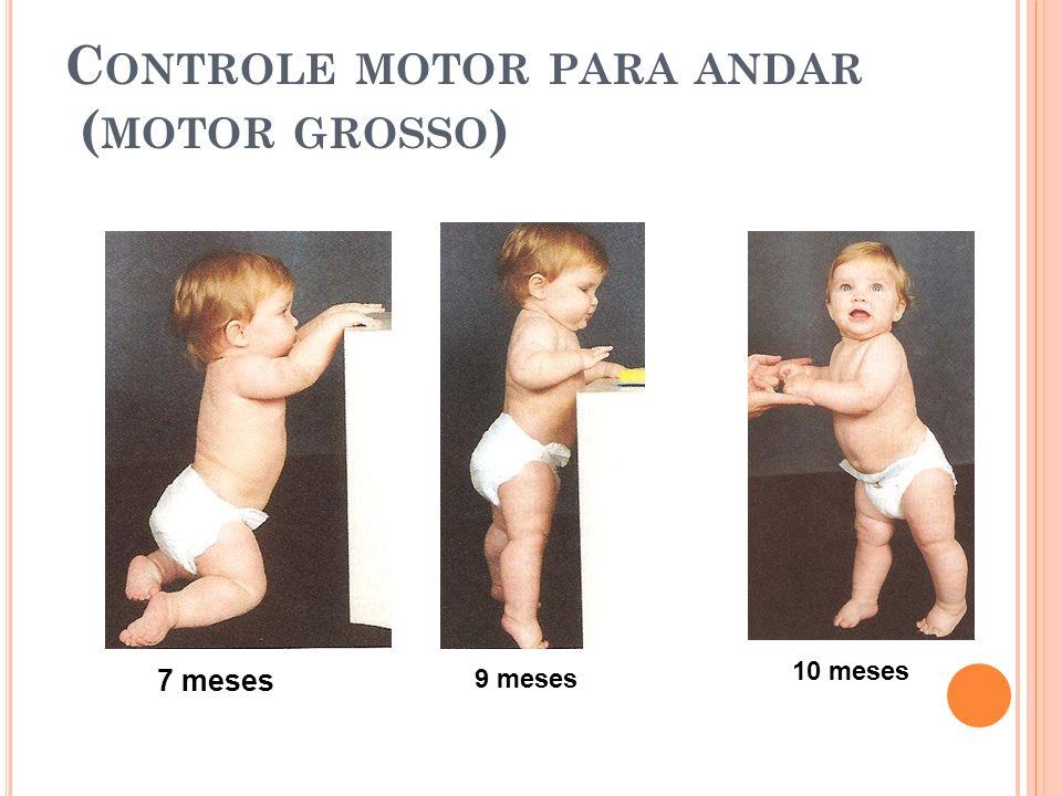 C ONTROLE MOTOR PARA ANDAR ( MOTOR GROSSO ) 7 meses 9 meses 10 meses