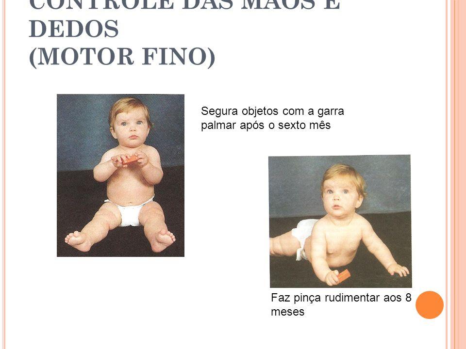 CONTROLE DAS MÃOS E DEDOS (MOTOR FINO) Segura objetos com a garra palmar após o sexto mês Faz pinça rudimentar aos 8 meses