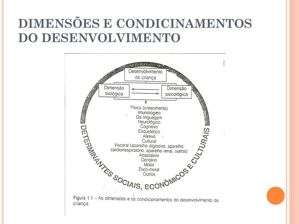 D ESENVOLVIMENTO I NTELECTUAL Piaget – teoria discutida desde de 1940 A estimulação ambiental é essencial para a progressão intelectual nos estágios do desenvolvimento cognitivo da criança, ou seja, essencial para o desenvolvimento da criança.