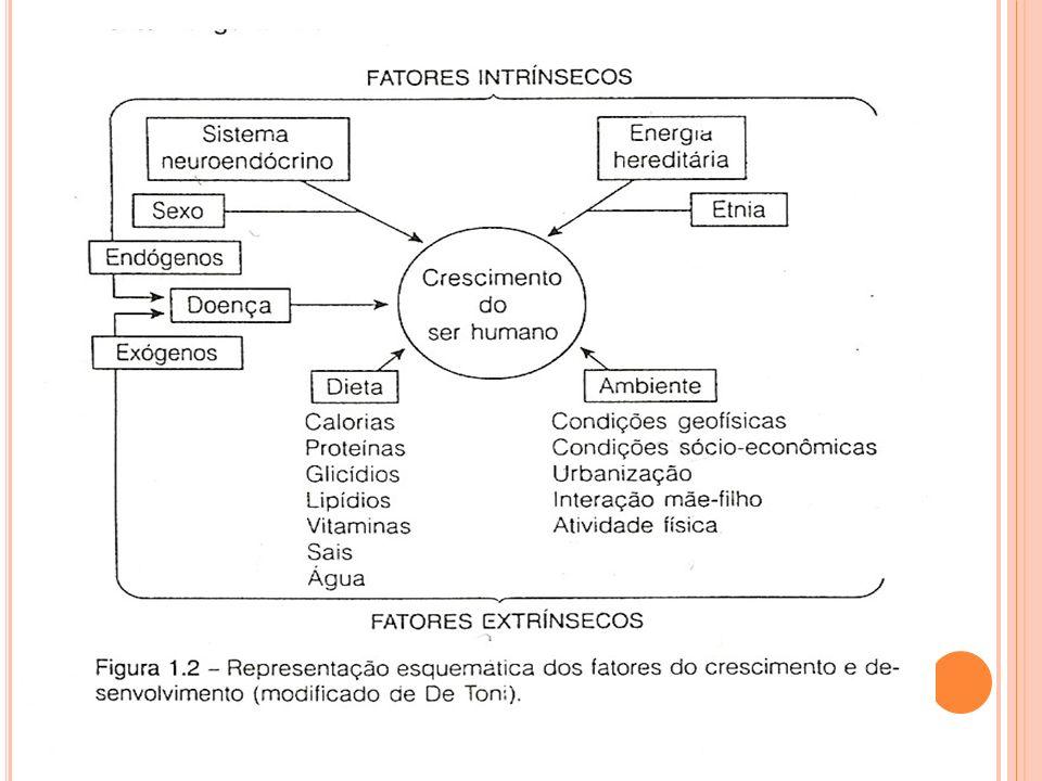 TIPOS DE CRESCIMENTO SEGUNDO ÓRGÃOS E TECIDOS Geral Neural (Cabeça) Linfóide Genital