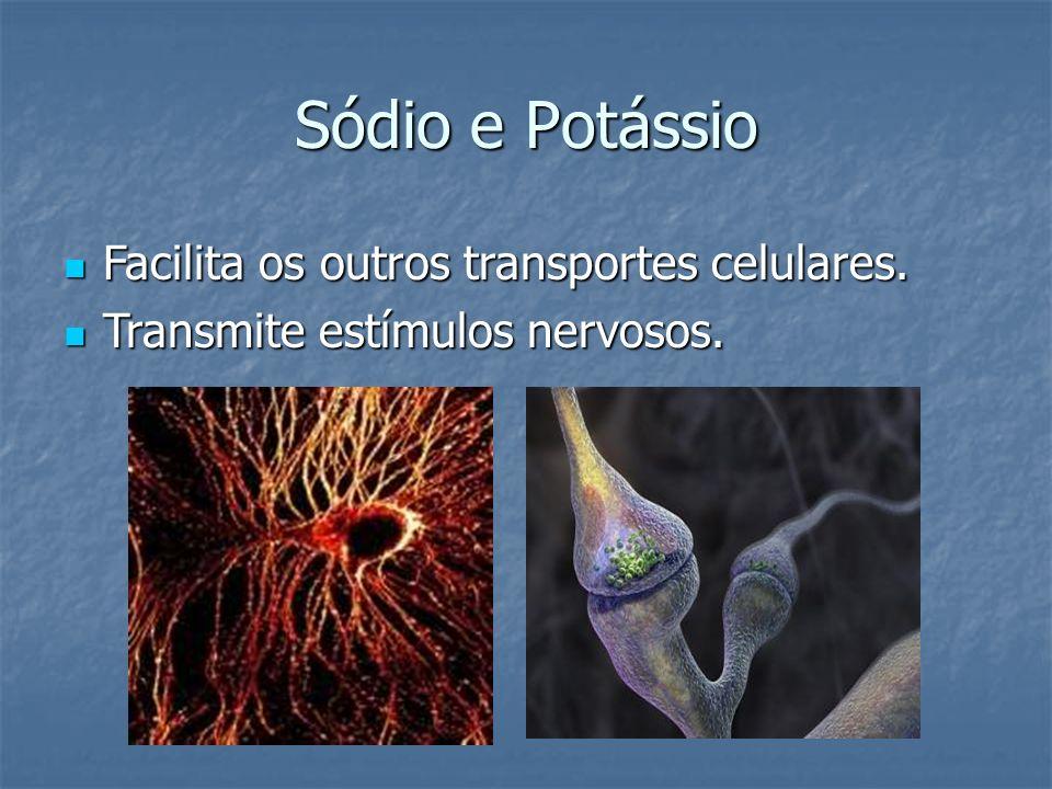 Sódio e Potássio Facilita os outros transportes celulares. Facilita os outros transportes celulares. Transmite estímulos nervosos. Transmite estímulos