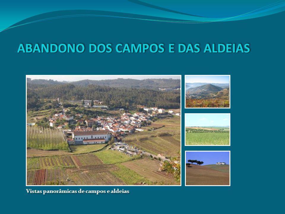 Vistas panorâmicas de campos e aldeias