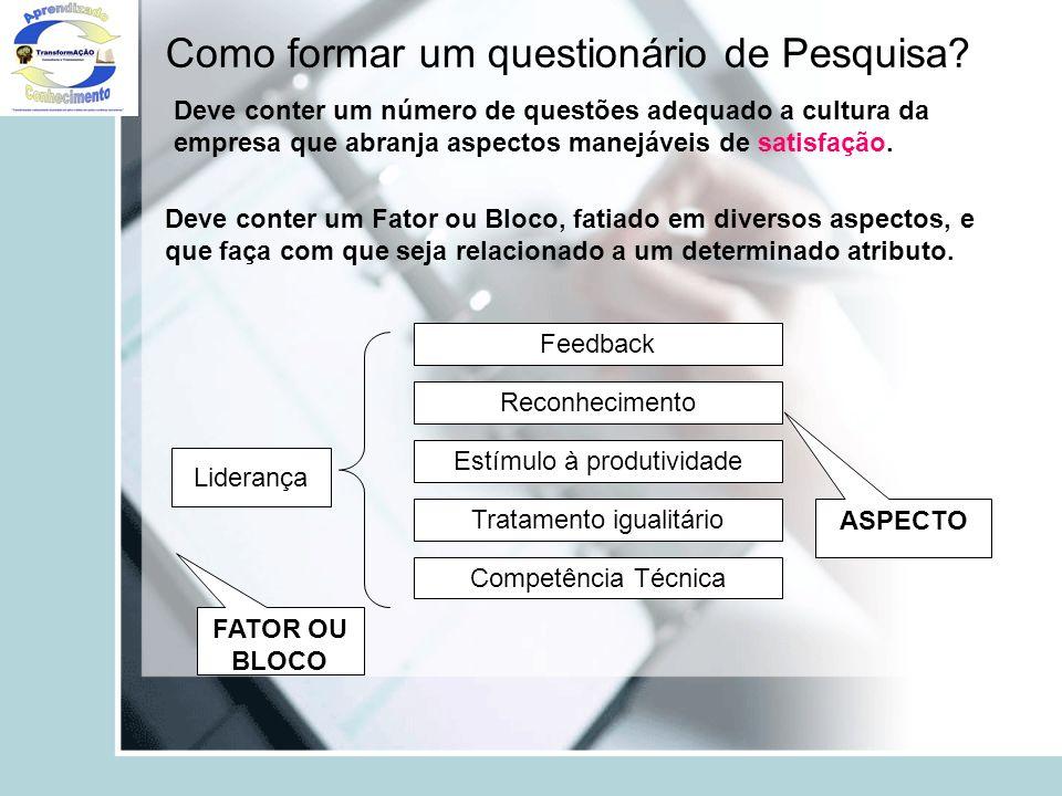 Como formar um questionário de Pesquisa? Deve conter um número de questões adequado a cultura da empresa que abranja aspectos manejáveis de satisfação