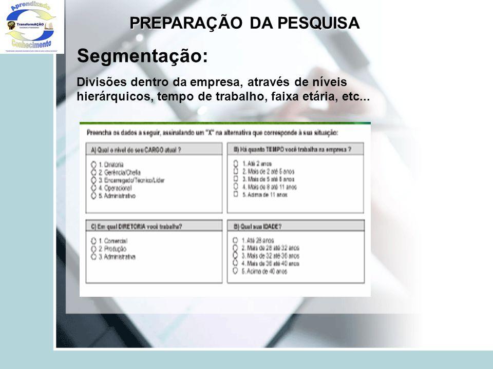 Segmentação: Divisões dentro da empresa, através de níveis hierárquicos, tempo de trabalho, faixa etária, etc... PREPARAÇÃO DA PESQUISA