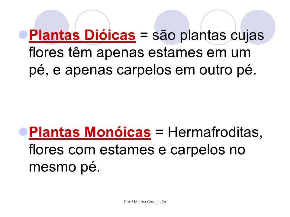 Plantas Dióicas = são plantas cujas flores têm apenas estames em um pé, e apenas carpelos em outro pé. Plantas Monóicas = Hermafroditas, flores com es