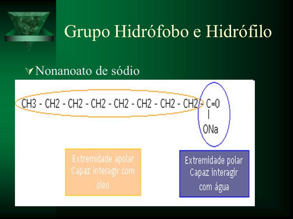 Grupo Hidrófobo e Hidrófilo Nonanoato de sódio