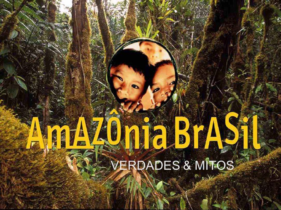 Processo de Desertificação As causas da estiagem na Amazônia dividiram a comunidade científica.