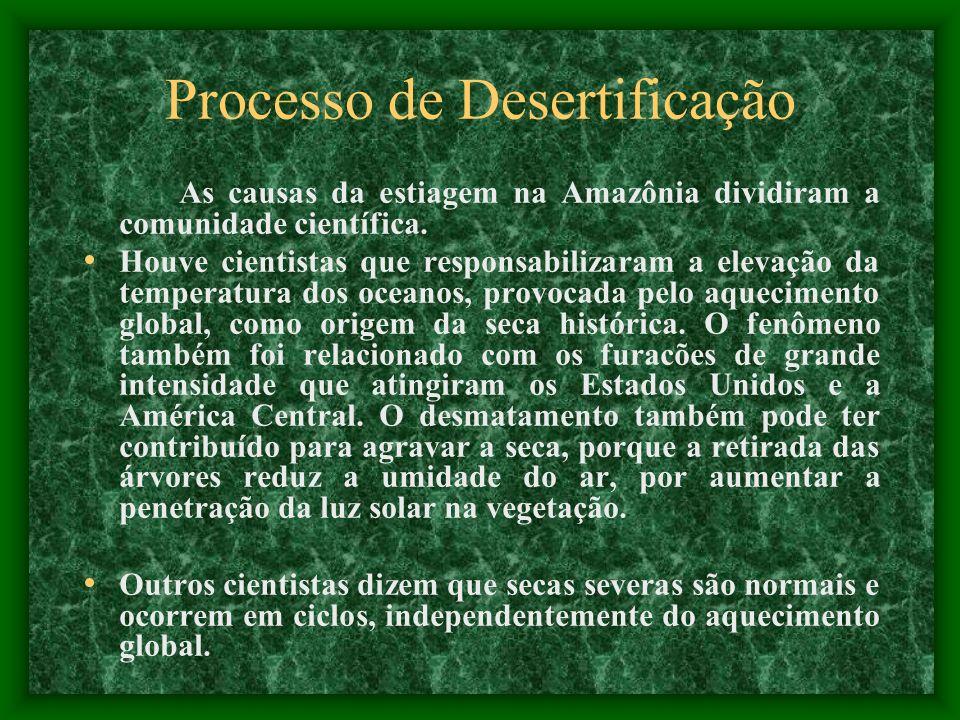 Processo de Desertificação A Amazônia está agora enfrentando seu segundo ano sucessivo de seca, o que leva à possibilidade de que ela possa começar a