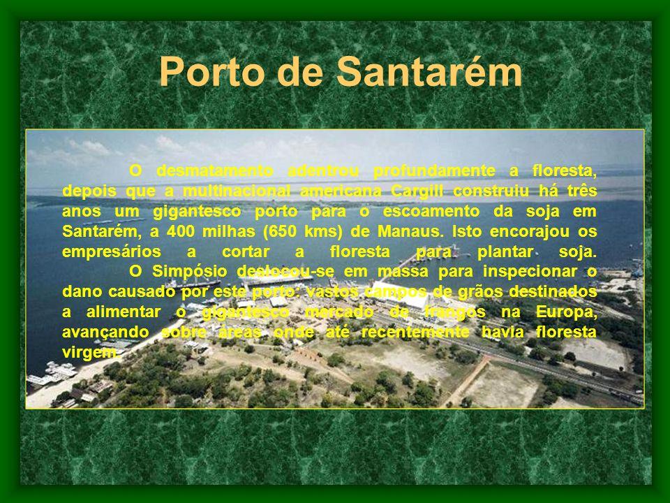 Incêndios e Desmatamentos 1997 – Incêndio de Roraima, o pior já visto na região, cerca de 38-40 mil quilômetros quadrados de área devastada. 1997 – In