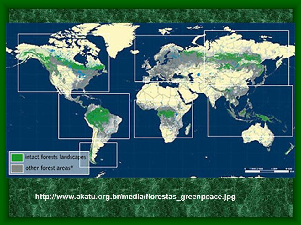 Invasão Norte-Americana Nos dias atuais, bases dos EUA cercam a Amazônia e o Pantanal, através de bases nos países fronteiriços.