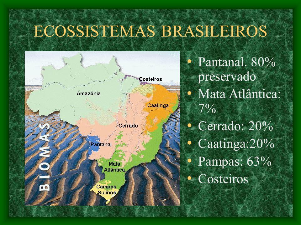 ECOSSISTEMAS BRASILEIROS Pantanal.