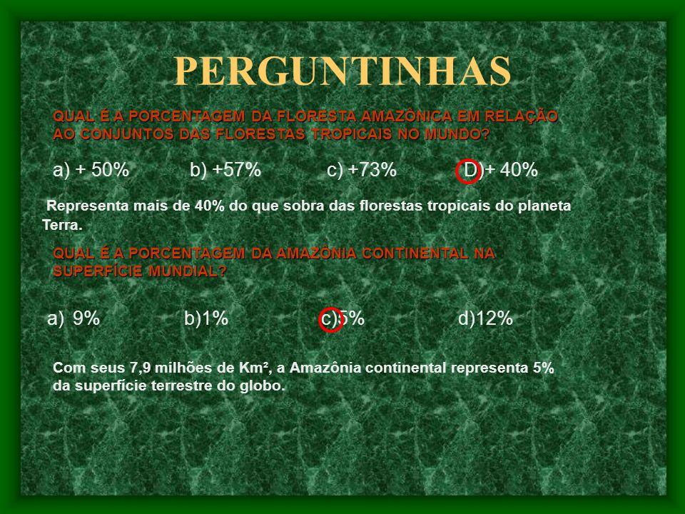 PERGUNTINHAS QUAL É A PORCENTAGEM DA AMAZÔNIA CONTINENTAL NA SUPERFÍCIE MUNDIAL.