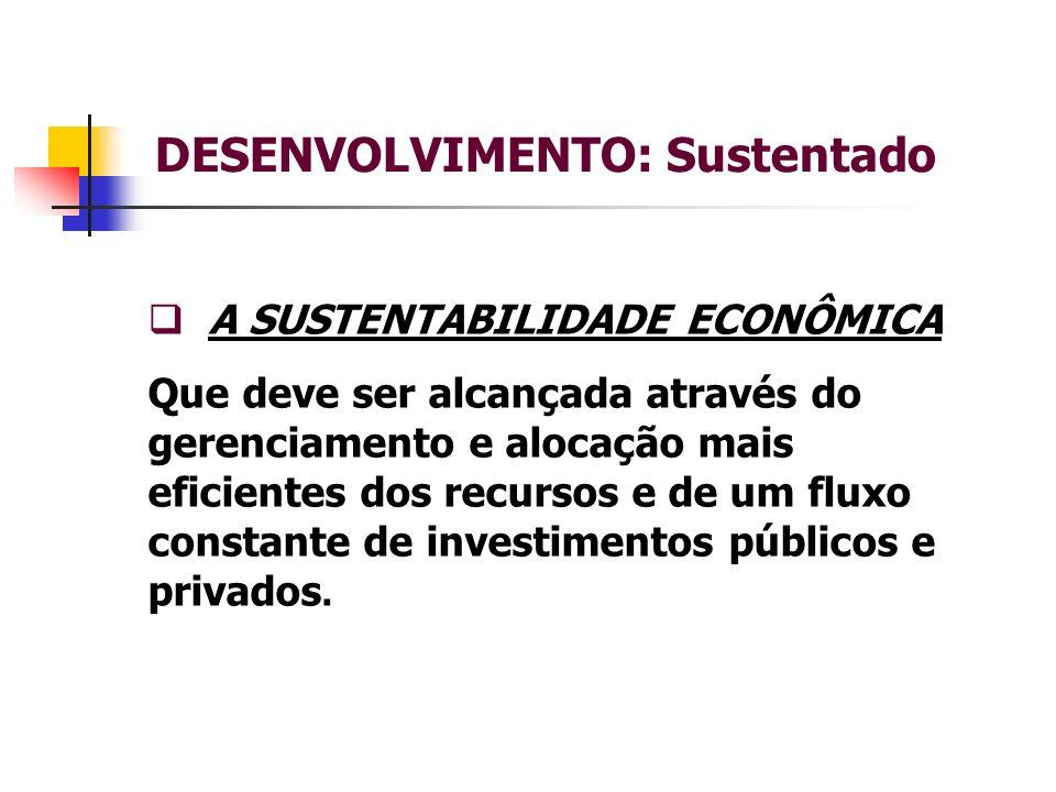 DESENVOLVIMENTO: Sustentado A SUSTENTABILIDADE ECONÔMICA Que deve ser alcançada através do gerenciamento e alocação mais eficientes dos recursos e de um fluxo constante de investimentos públicos e privados.