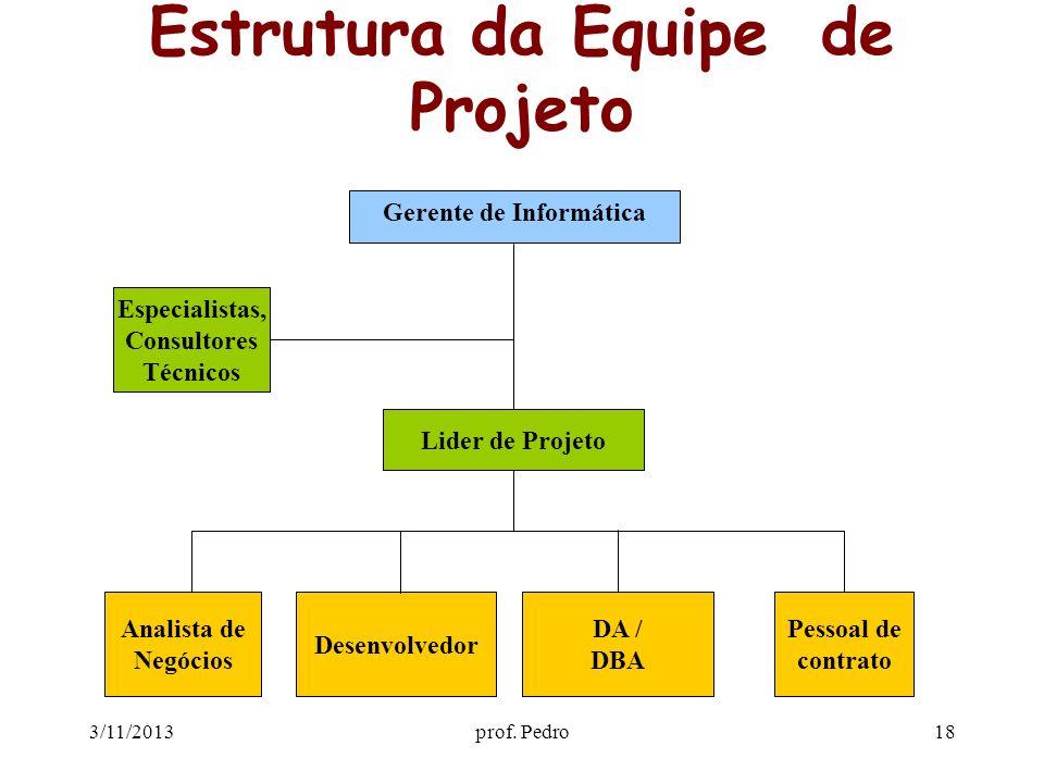 3/11/2013prof. Pedro18 Estrutura da Equipe de Projeto Analista de Negócios Desenvolvedor DA / DBA Pessoal de contrato Lider de Projeto Especialistas,