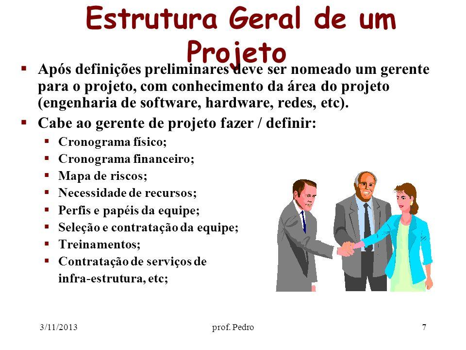 3/11/2013prof. Pedro7 Estrutura Geral de um Projeto Após definições preliminares deve ser nomeado um gerente para o projeto, com conhecimento da área