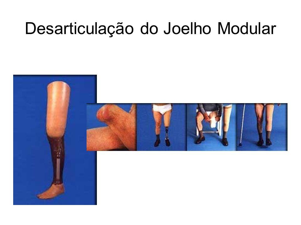 Desarticulação do Joelho Modular