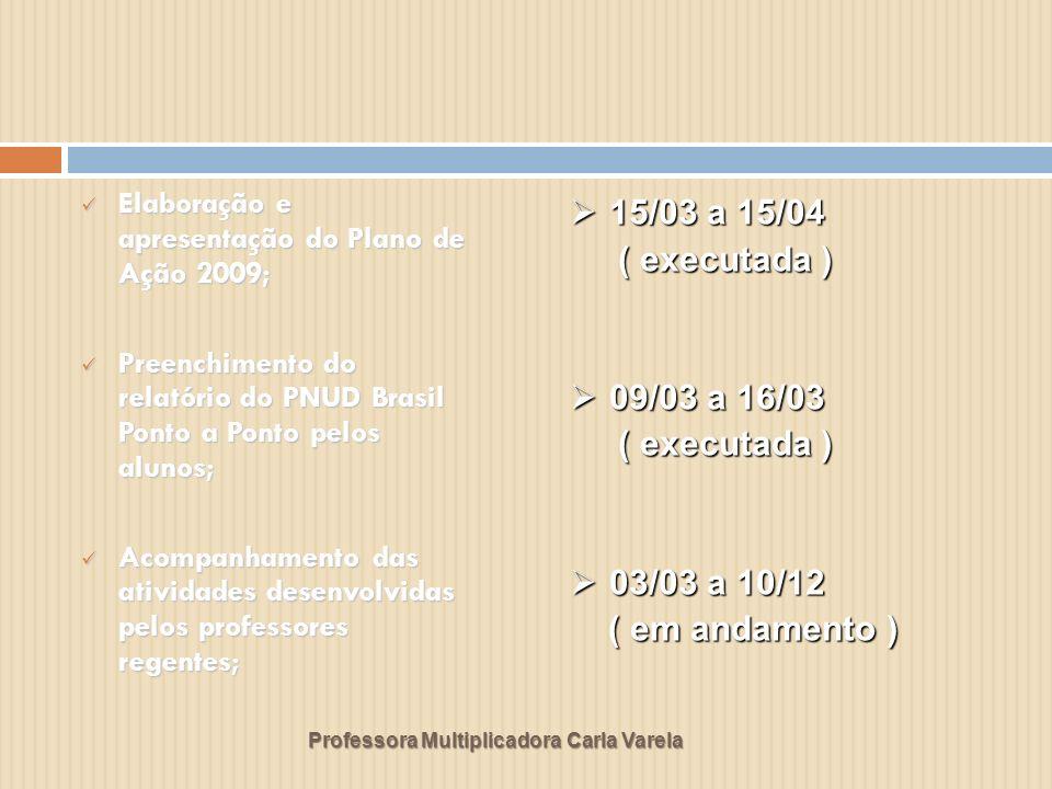 Professora Multiplicadora Carla Varela Elaboração e apresentação do Plano de Ação 2009; Elaboração e apresentação do Plano de Ação 2009; Preenchimento
