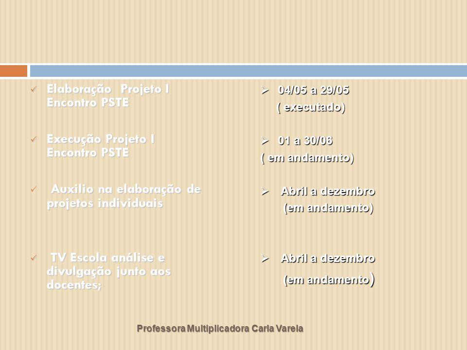 Professora Multiplicadora Carla Varela Elaboração Projeto I Encontro PSTE Elaboração Projeto I Encontro PSTE Execução Projeto I Encontro PSTE Execução