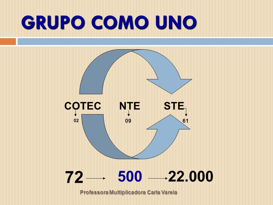 GRUPO COMO UNO 72 50022.000 COTEC NTE STE 02 0961
