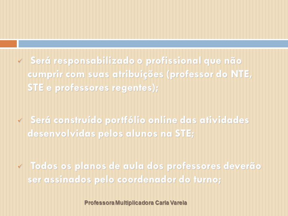 Professora Multiplicadora Carla Varela Será responsabilizado o profissional que não cumprir com suas atribuições (professor do NTE, STE e professores