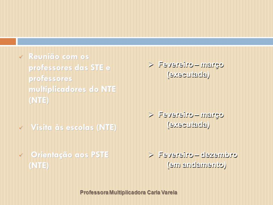 Professora Multiplicadora Carla Varela Acompanhamento das atividades desenvolvidas pelos PSTE (NTE) Acompanhamento das atividades desenvolvidas pelos PSTE (NTE) Curso informática básica (STE) Curso informática básica (STE) Projeto Brasil Ponto a Ponto (STE) Projeto Brasil Ponto a Ponto (STE) Março a dezembro Março a dezembro (em andamento) (em andamento) Março – abril – maio Março – abril – maio ( executado) Março – abril Março – abril ( executado ) ( executado )