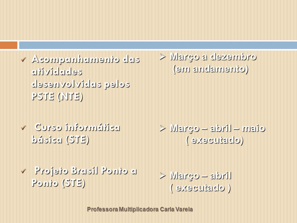 Professora Multiplicadora Carla Varela Curso Tecnologias na Educação: ensinando e aprendendo com as TIC (NTE) Curso Tecnologias na Educação: ensinando e aprendendo com as TIC (NTE) Projetos para I Encontro PSTE (STE) Projetos para I Encontro PSTE (STE) Abril – Outubro Abril – Outubro ( em andamento em Nova Andradina) ( em andamento em Nova Andradina) Maio - Julho Maio - Julho (em andamento) (em andamento)