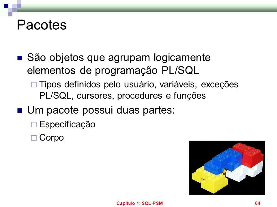 Capítulo 1: SQL-PSM64 Pacotes São objetos que agrupam logicamente elementos de programação PL/SQL Tipos definidos pelo usuário, variáveis, exceções PL