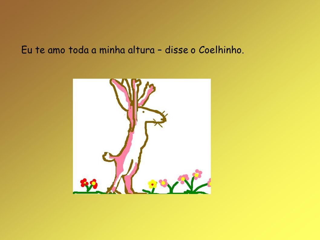 Eu te amo toda a minha altura – disse o Coelhinho.