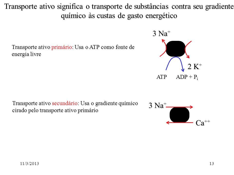 11/3/201312 Os íons são segregados por transportadores presentes na membrana que realizam transporte ativo 3 Na + 2 K + ATP ADP + P i 1 3 Na + Ca ++ C