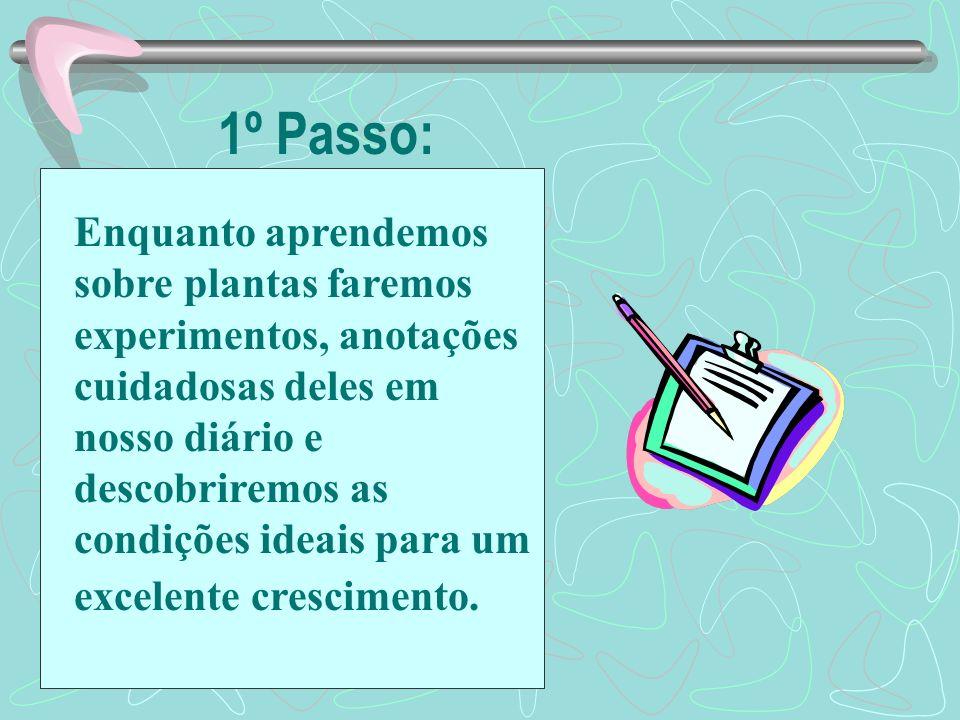 2º Passo Compartilhe as anotações de seu diário com seu grupo Discuta as condições ideais para um excelente crescimento Determine o plano de seu grupo