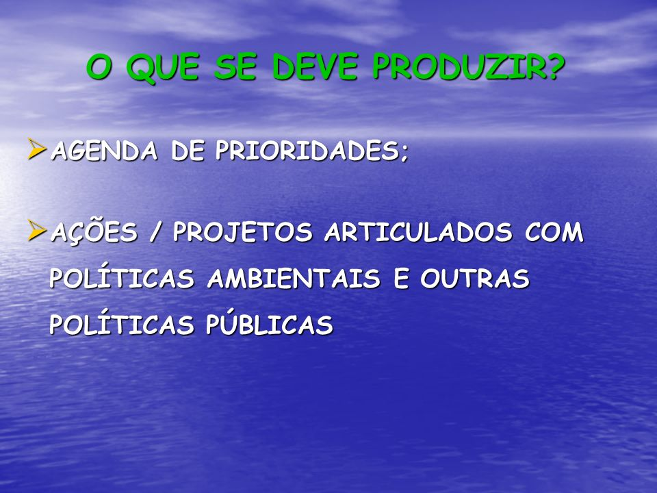 O QUE SE DEVE PRODUZIR? AGENDA DE PRIORIDADES; AGENDA DE PRIORIDADES; AÇÕES / PROJETOS ARTICULADOS COM POLÍTICAS AMBIENTAIS E OUTRAS POLÍTICAS PÚBLICA