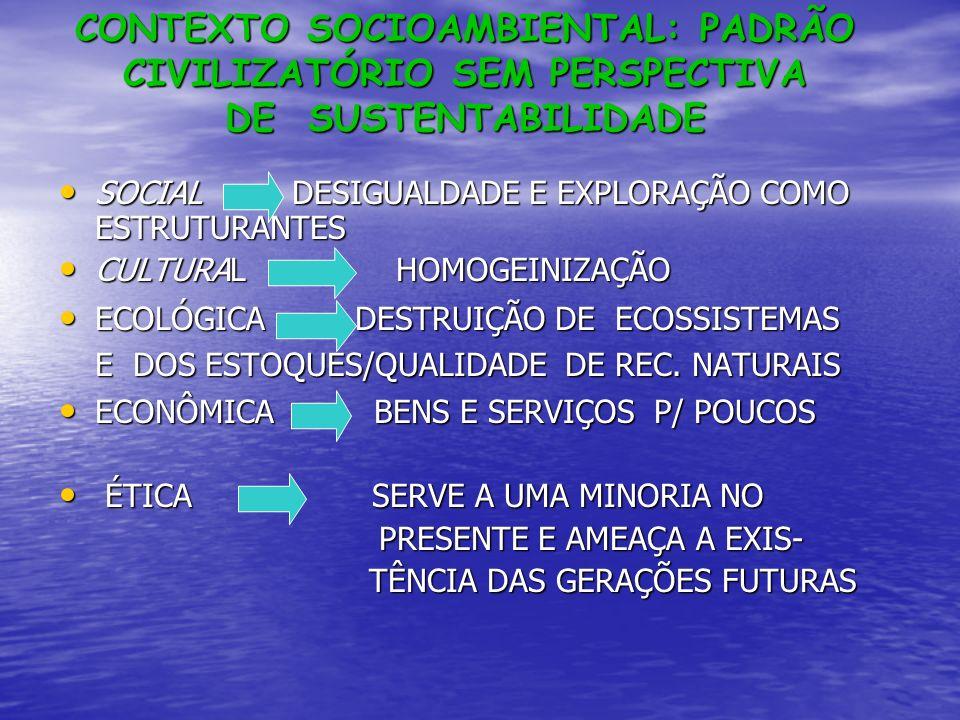 CONTEXTO SOCIOAMBIENTAL: PADRÃO CIVILIZATÓRIO SEM PERSPECTIVA DE SUSTENTABILIDADE SOCIAL DESIGUALDADE E EXPLORAÇÃO COMO ESTRUTURANTES SOCIAL DESIGUALD