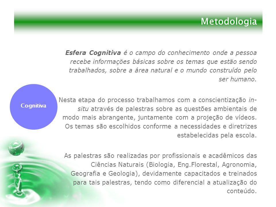 Metodologia Esfera Cognitiva é o campo do conhecimento onde a pessoa recebe informações básicas sobre os temas que estão sendo trabalhados, sobre a ár