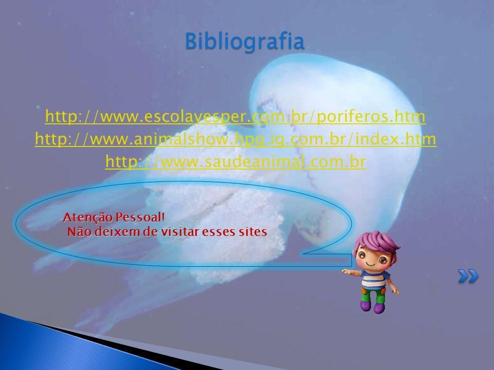 http://www.escolavesper.com.br/poriferos.htm http://www.animalshow.hpg.ig.com.br/index.htm http://www.saudeanimal.com.brBibliografia Atenção Pessoal!