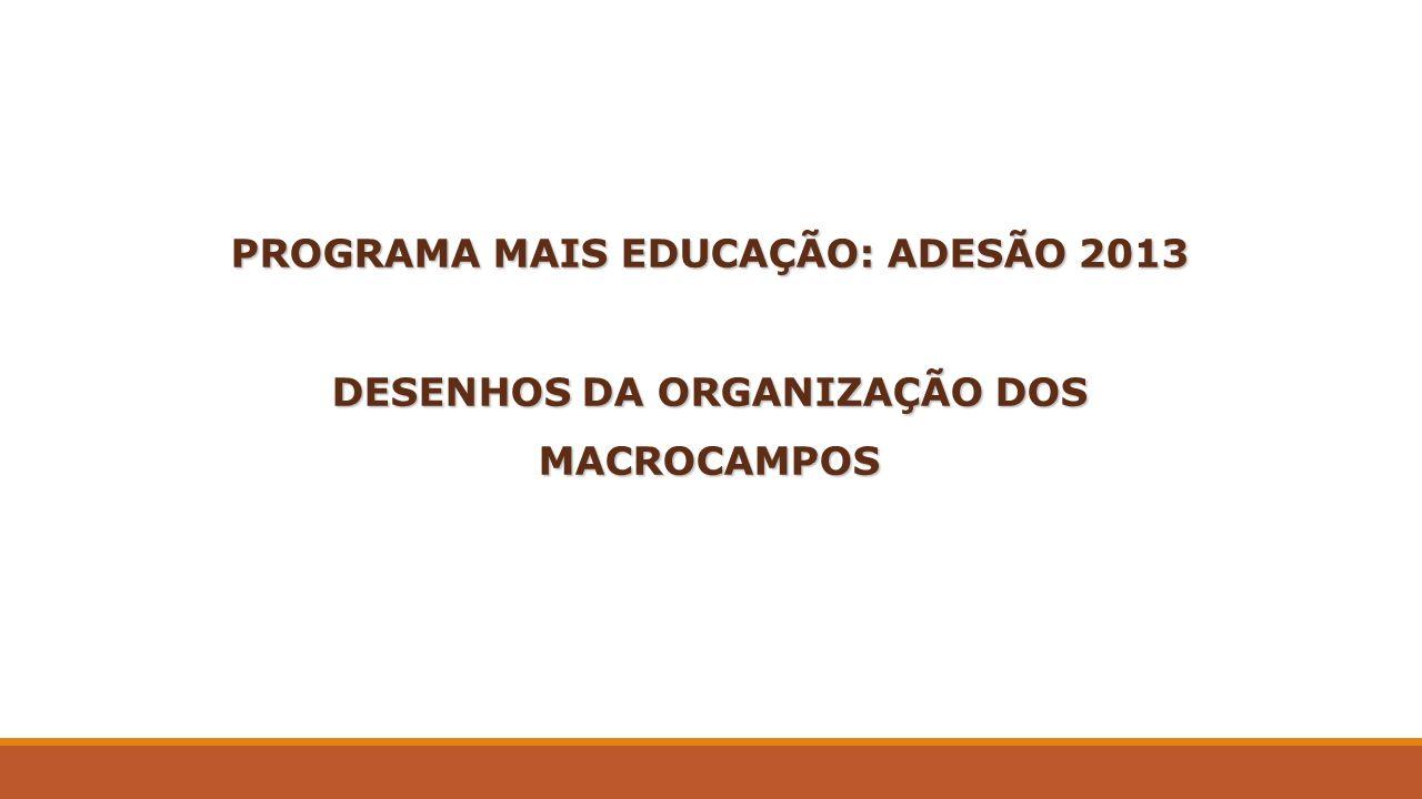 PROGRAMA MAIS EDUCAÇÃO: ADESÃO 2013 DESENHOS DA ORGANIZAÇÃO DOS MACROCAMPOS