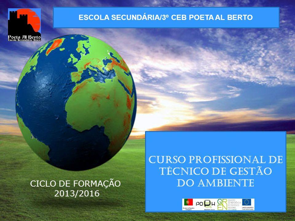 ESCOLA SECUNDÁRIA/3º CEB POETA AL BERTO CURSO PROFISSIONAL DE TÉCNICO DE GESTÃO DO AMBIENTE CICLO DE FORMAÇÃO 2013/2016