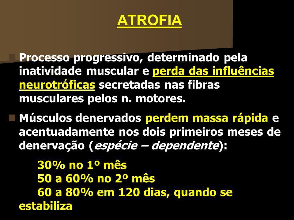 ATROFIA Processo progressivo, determinado pela inatividade muscular e perda das influências neurotróficas secretadas nas fibras musculares pelos n. mo
