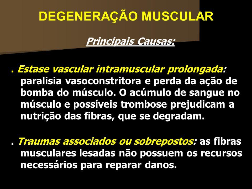 DEGENERAÇÃO MUSCULAR Principais Causas:. Estase vascular intramuscular prolongada: paralisia vasoconstritora e perda da ação de bomba do músculo. O ac
