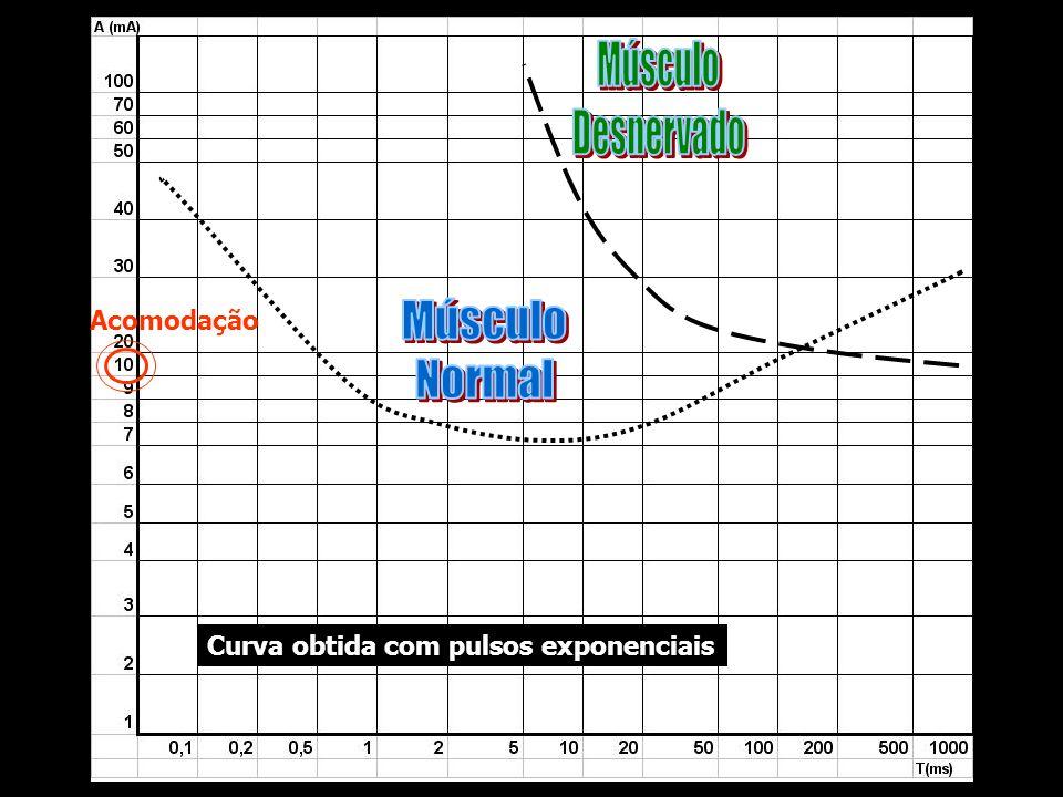 Acomodação Curva obtida com pulsos exponenciais