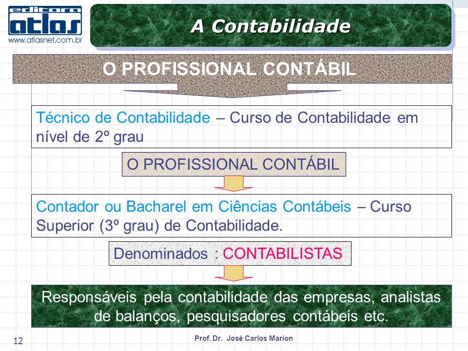 Prof. Dr. José Carlos Marion 12 O PROFISSIONAL CONTÁBIL Técnico de Contabilidade – Curso de Contabilidade em nível de 2º grau Contador ou Bacharel em