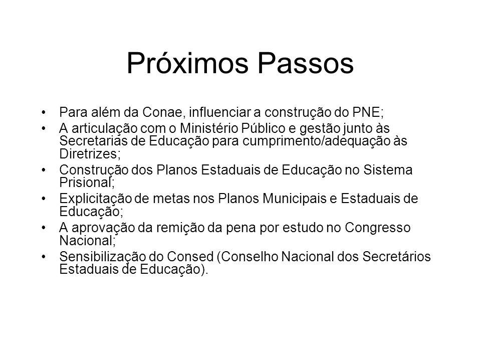 Próximos Passos Para além da Conae, influenciar a construção do PNE; A articulação com o Ministério Público e gestão junto às Secretarias de Educação