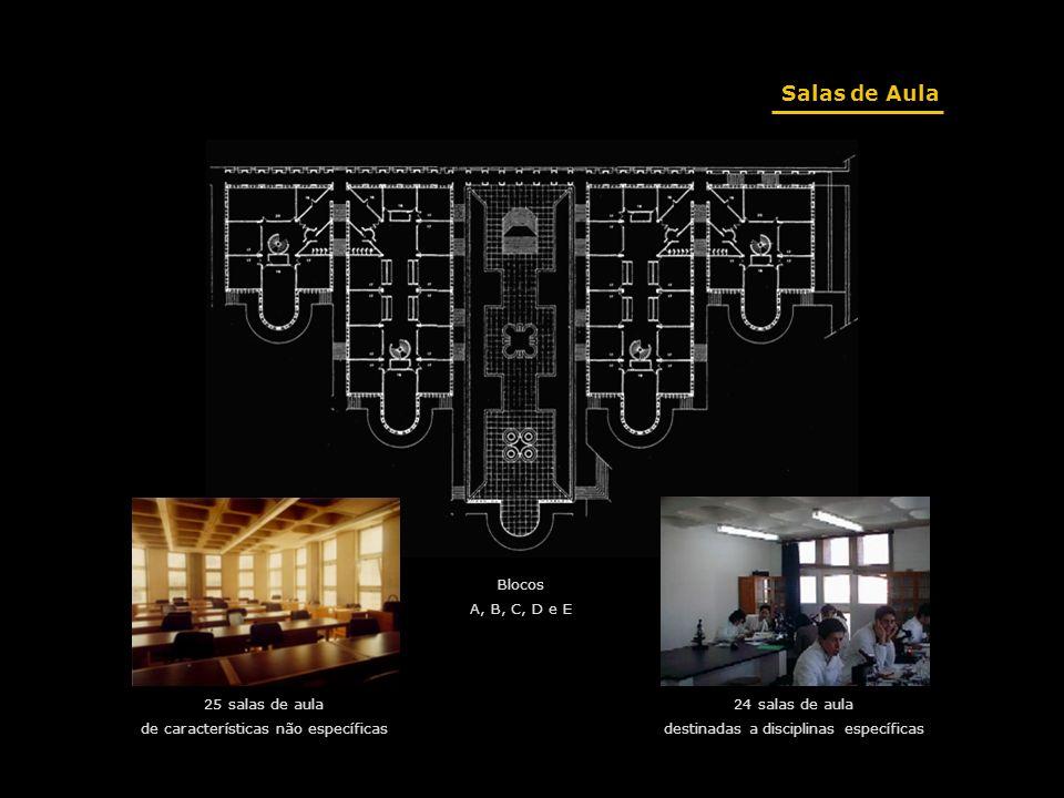 Salas de Aula 24 salas de aula destinadas a disciplinas específicas 25 salas de aula de características não específicas Blocos A, B, C, D e E
