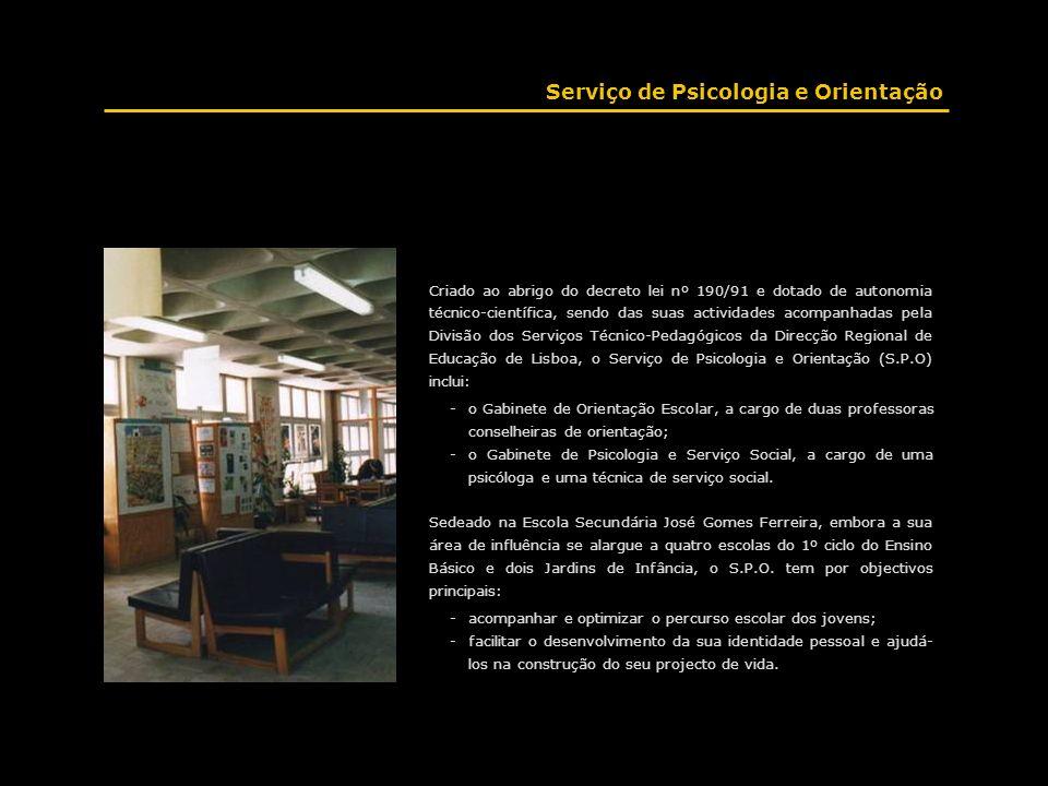Criado ao abrigo do decreto lei nº 190/91 e dotado de autonomia técnico-científica, sendo das suas actividades acompanhadas pela Divisão dos Serviços
