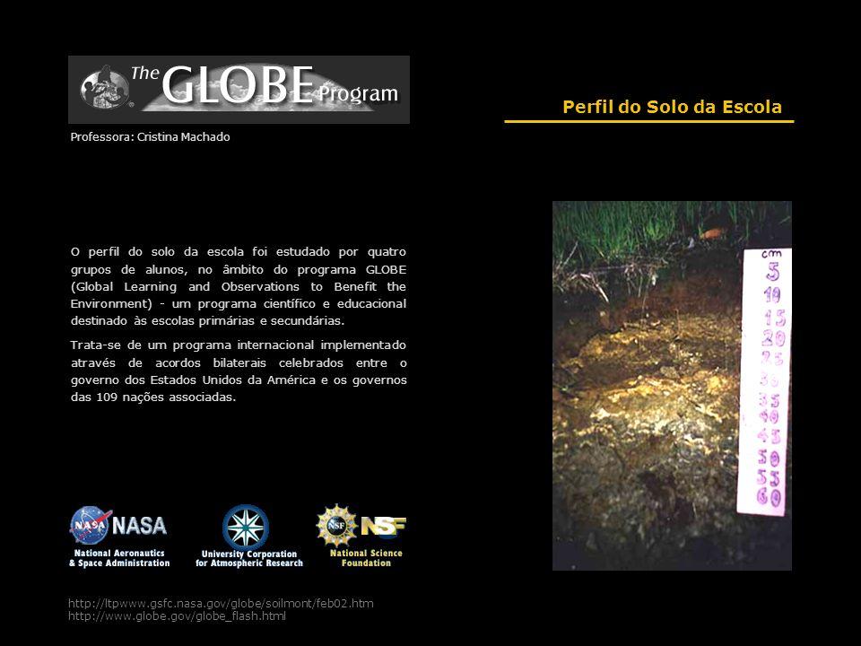 http://ltpwww.gsfc.nasa.gov/globe/soilmont/feb02.htm http://www.globe.gov/globe_flash.html Perfil do Solo da Escola Professora: Cristina Machado O per