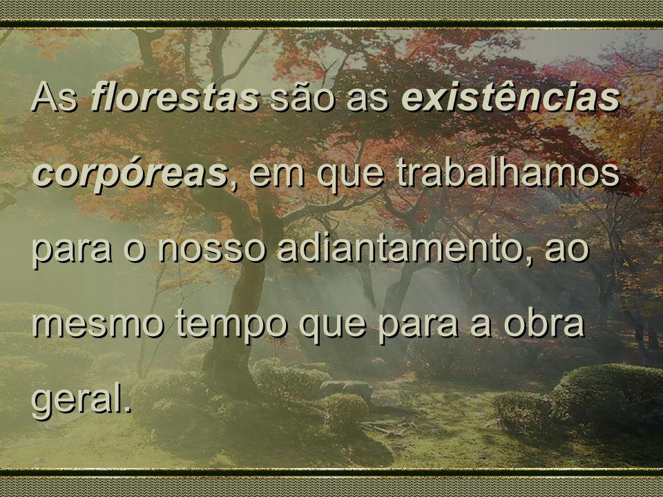 As florestas são as existências corpóreas, em que trabalhamos para o nosso adiantamento, ao mesmo tempo que para a obra geral. As florestas são as exi