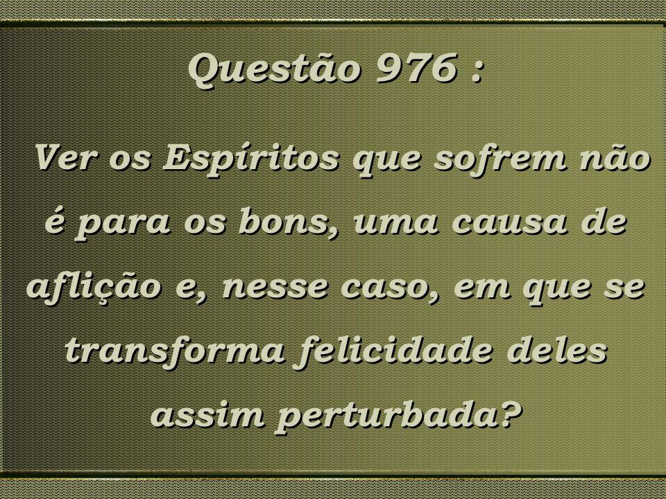 Questão 976 : Ver os Espíritos que sofrem não é para os bons, uma causa de aflição e, nesse caso, em que se transforma felicidade deles assim perturba
