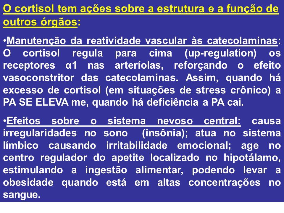 O cortisol tem ações sobre a estrutura e a função de outros órgãos: Manutenção da reatividade vascular às catecolaminas: O cortisol regula para cima (