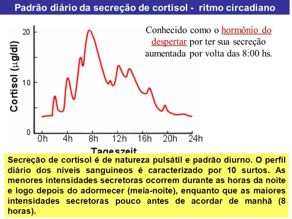 Padrão diário da secreção de cortisol - ritmo circadiano Secreção de cortisol é de natureza pulsátil e padrão diurno. O perfil diário dos níveis sangu