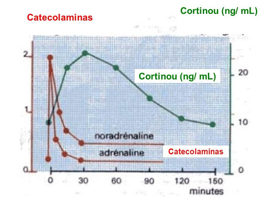Cortinou (ng/ mL) Catecolaminas Cortinou (ng/ mL) Catecolaminas